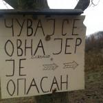 drina-vet-bajina-basta (13) (Custom)